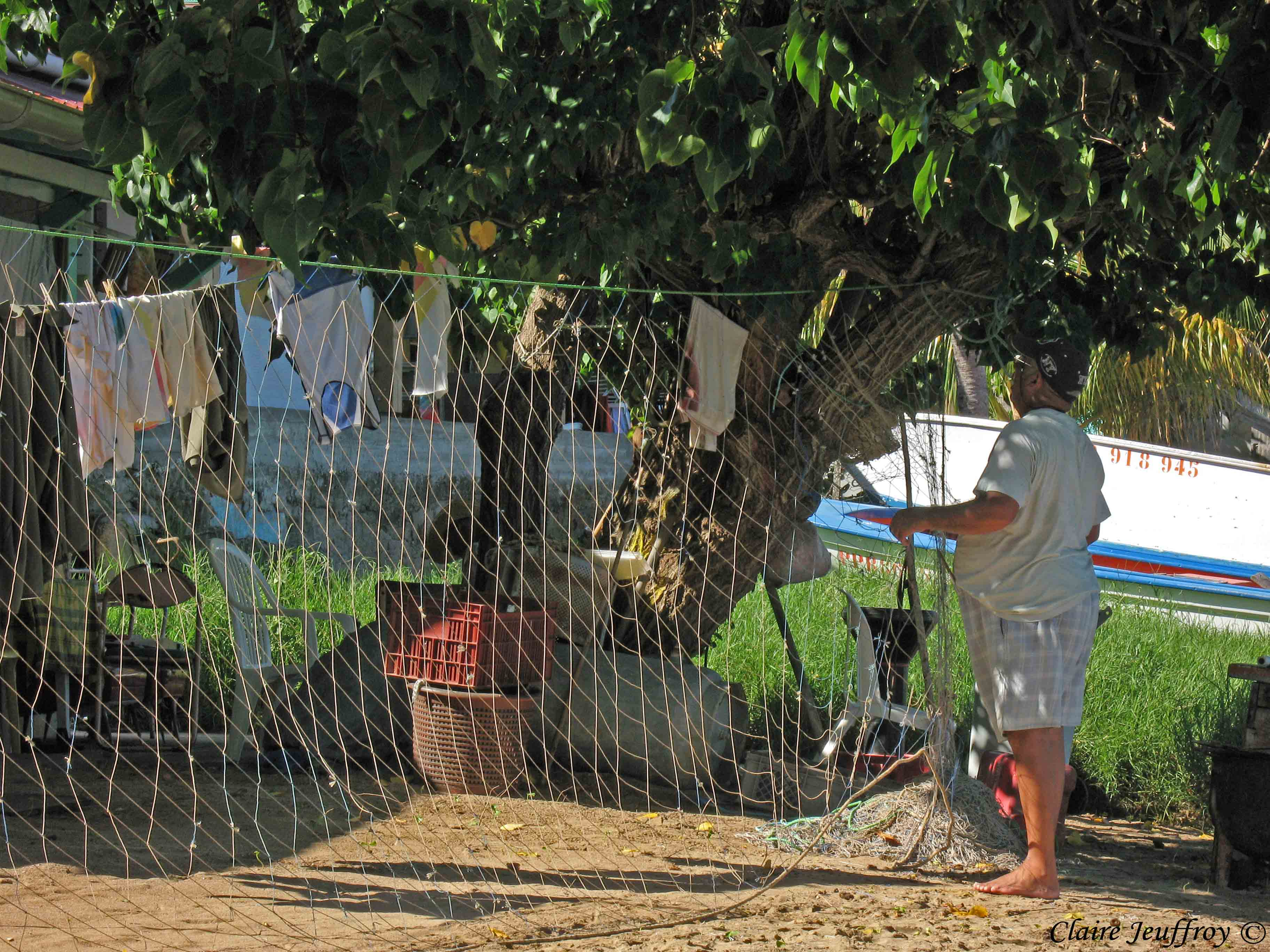 location bungalow chez claire et éric terre de haut les saintes